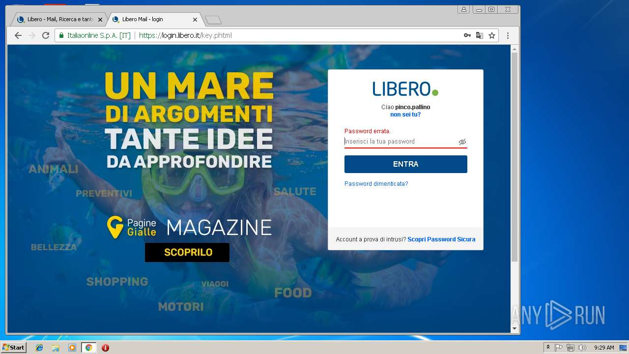 pagine gialle btc